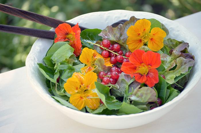 Salata da primavaira cun carschun chaputschin.