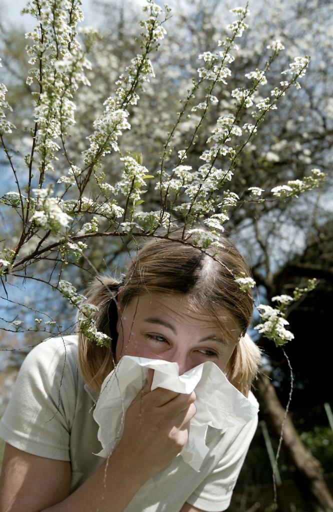 La stagiun dals pollen cumenza cun l'entschatta da la primavaira.