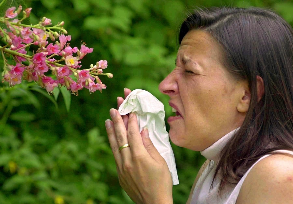La strucca da fain è ina da las allergias