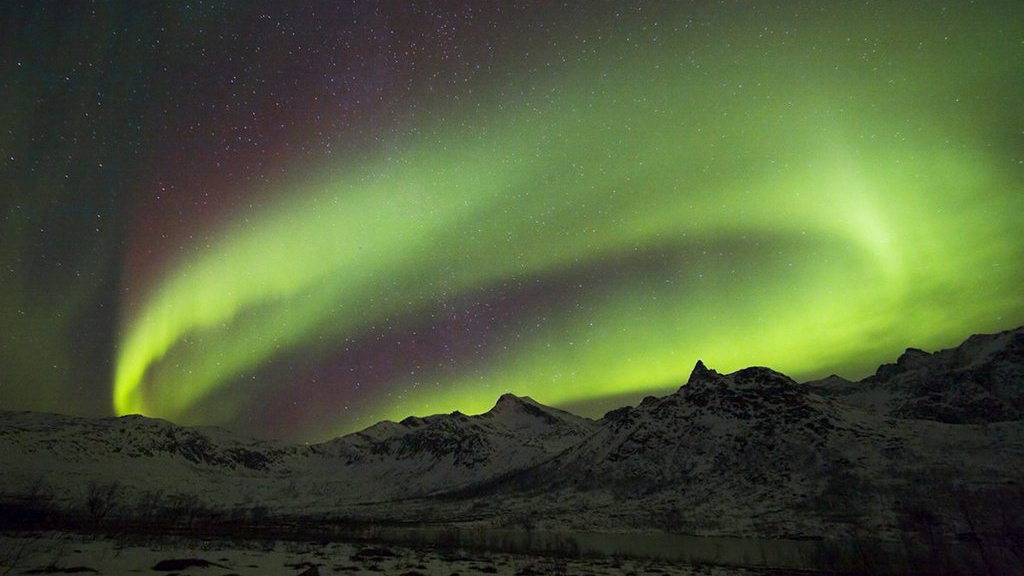 Glischs polaras en la Norvegia.